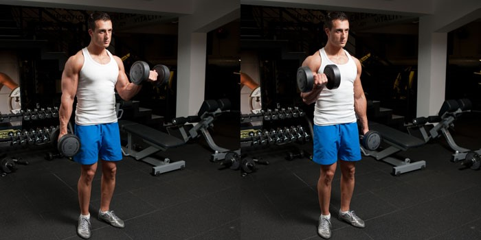 Standing Dumbbell Biceps Curls