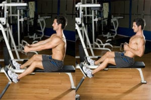 Exercise 1 Lats - Seated Cable Rows