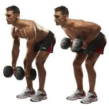 Exercise 3 Lats - Bent over Two Dumbbell Row with Palms In