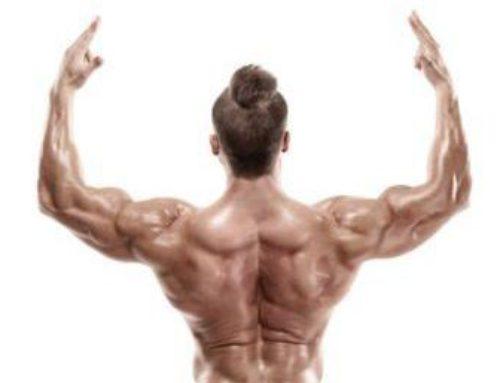 Best Lat Exercises for Men