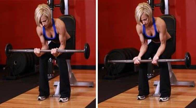 Forearms Women 2 - Seated Barbell