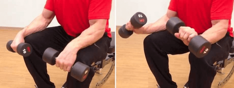 Dumbbell Wrist Extension Forearms workout 7