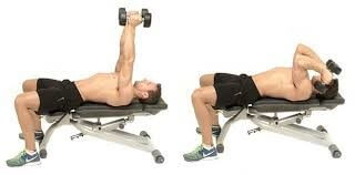 Lying Triceps Extension Dumbbell