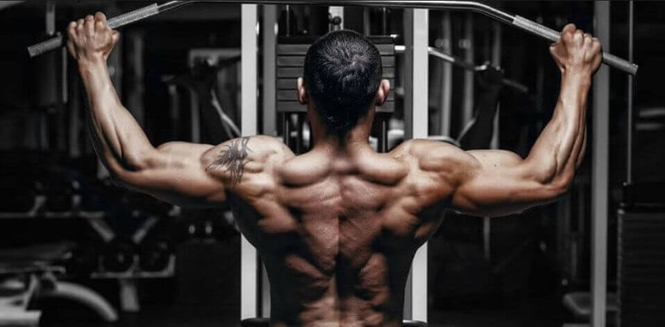 lower back exercises for men