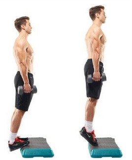 Standing calf raise with Dumbbells on elevated surface