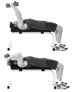 Triceps exercise 1 Lying Triceps Extension