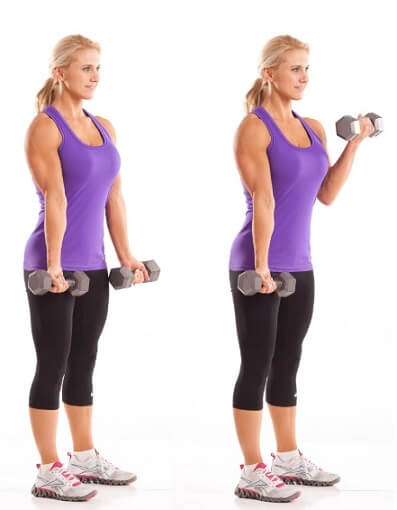 Dumbbell Curls for Women Biceps