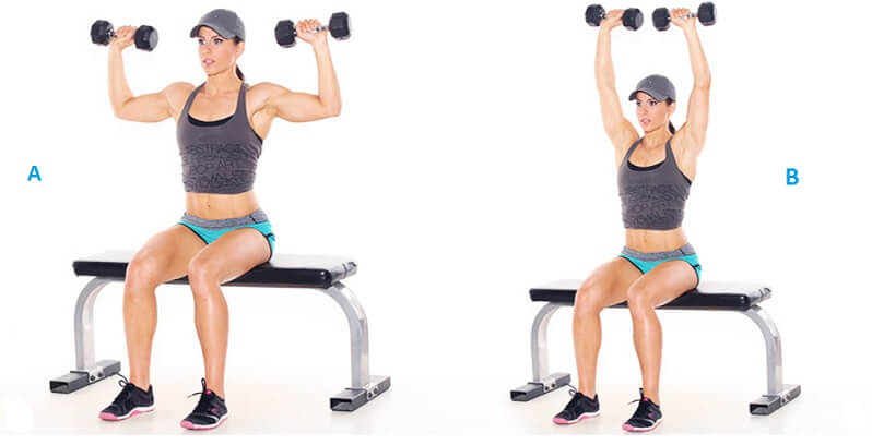 Seated Dumbbell Press workout for women