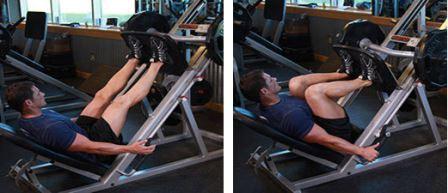 quad exercise 5 - Leg Press